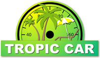 topic car logo